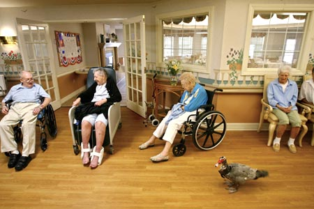 assistedliving.jpg